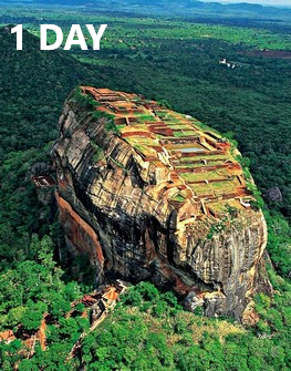 1-day tour packages